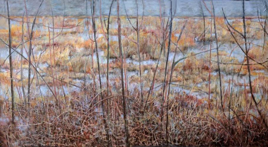 Winter's Field