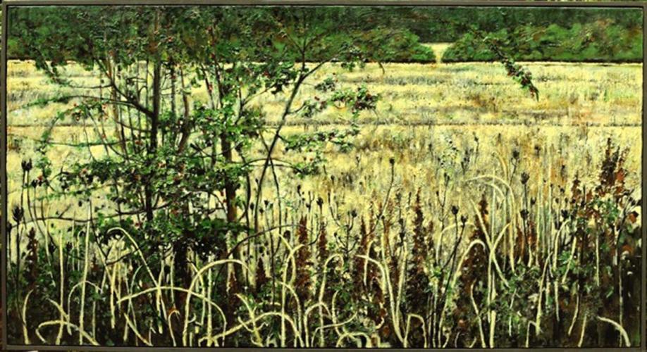 Saanich Field